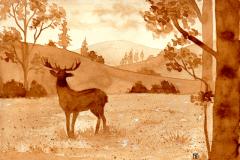 Deer by coffee